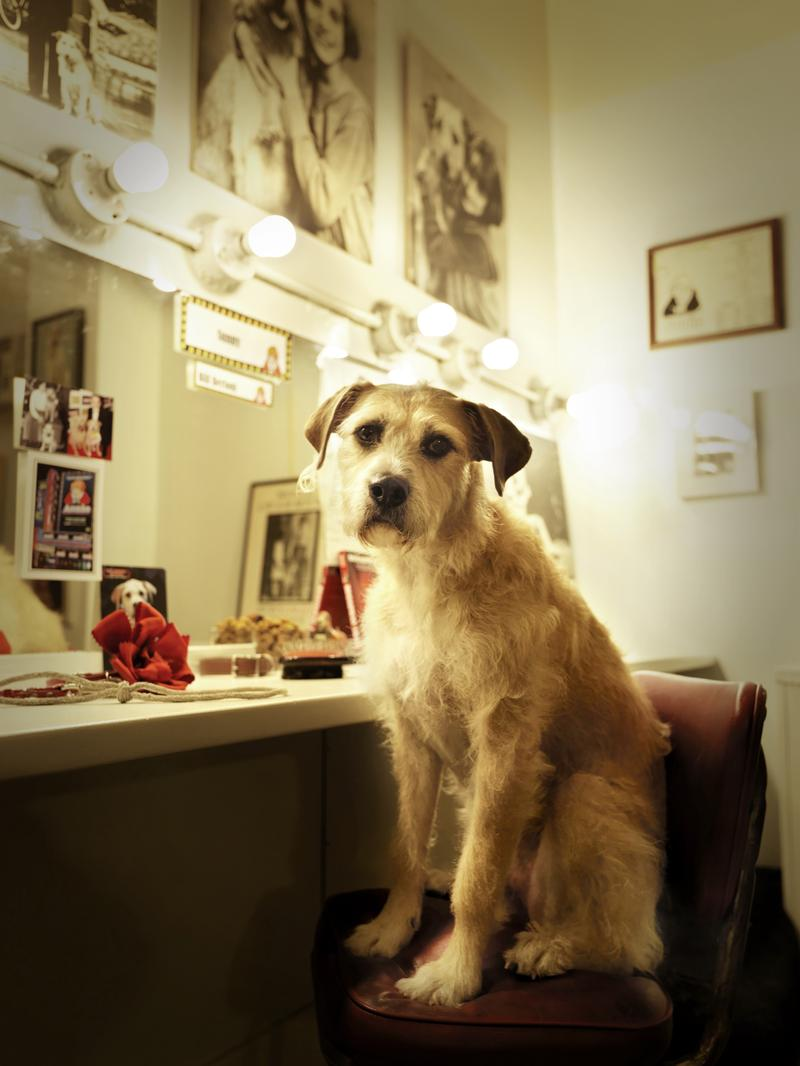 "Sunny (Sandy in ""Annie"") in his dressing room"