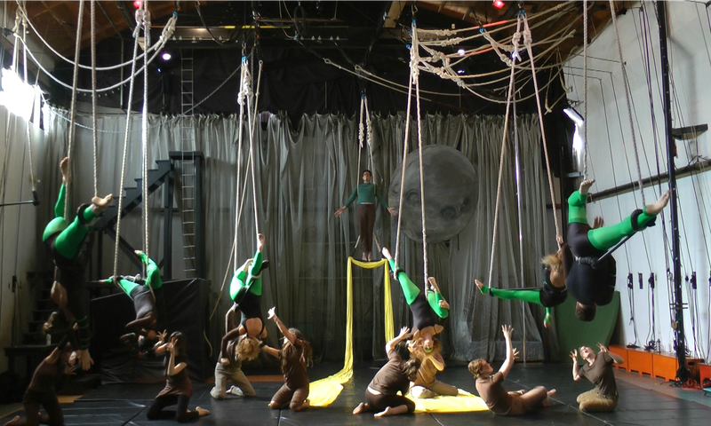"""Uma Nagendra's piece, """"Plant-Soil Feedbacks after Severe Tornado Damage,"""" won the Dance Your PhD competition in 2014"""