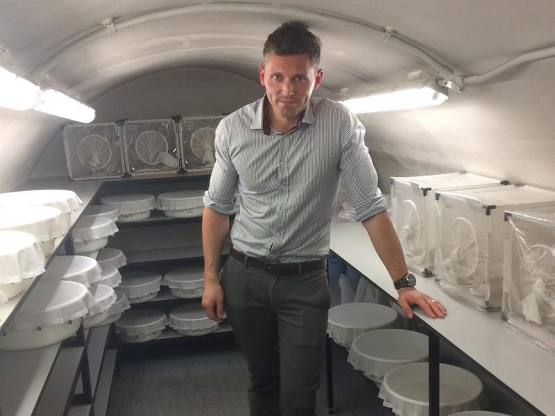 Dr. James Logan, an entomologist, studies mosquitoes from around the world in an effort to make them less dangerous. The London School of Hygiene and Tropical Medicine keeps them in a cavern beneath the streets of London. They bowls contain mosquito larvae in water while the boxes are where the adults live.