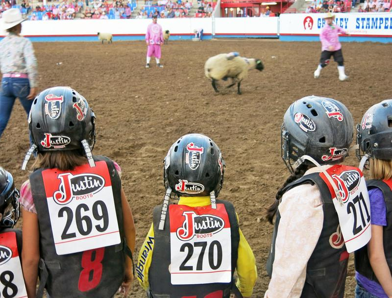 Mutton busters look on as a participant loses his grip on the sheep. (Luke Runyon/Harvest Public Media)