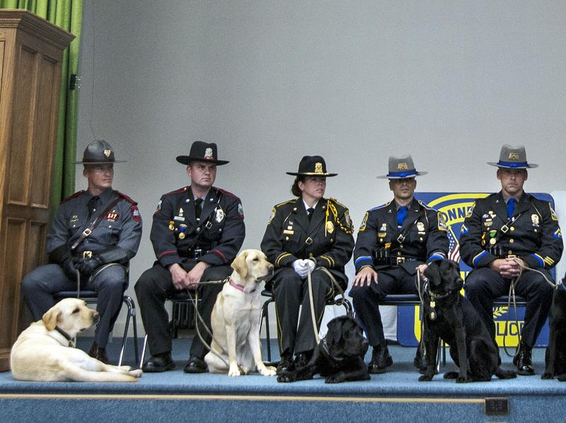 In June, the 167th Patrol Dog Class graduated from their canine narcotics and electronic media detection training, held by the Connecticut State Police Canine Unit. At far left is Thoreau, who now helps police in Rhode Island find computer hard drives.