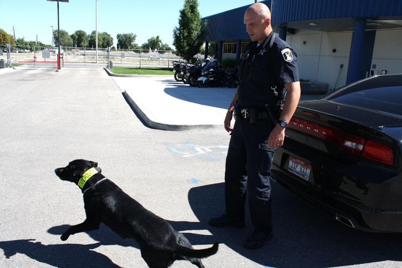Idaho State Police corporal Chris Cottrell is pictured with his drug-sniffing dog Dax. (Jessica Robinson/Northwest News Network)