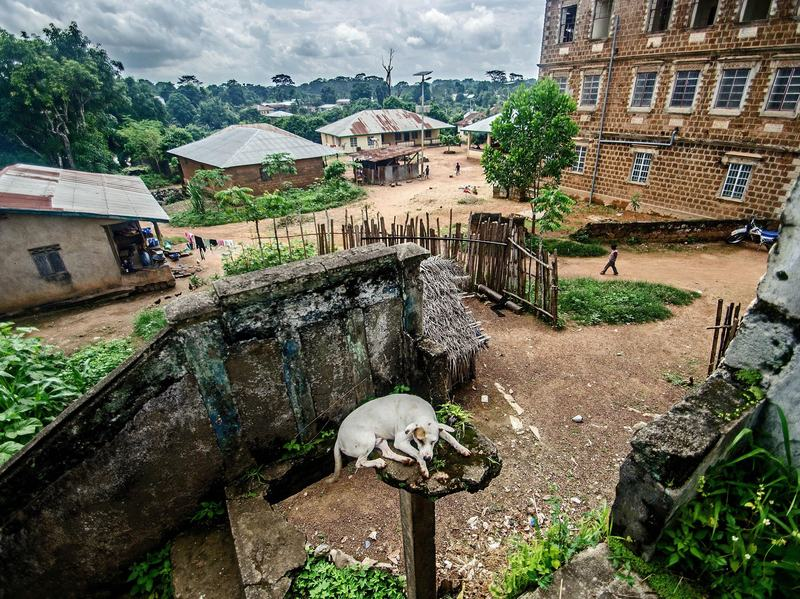 A dog sleeps in a derelict building in central Kailahun, where the streets are unusually empty.