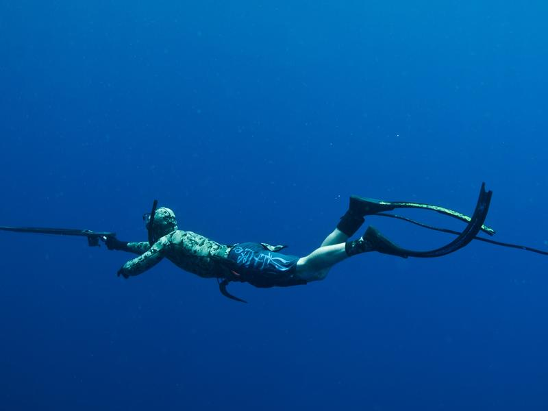 The antenna trailing off the diver's foot is there to ward off sharks by creating an electromagnetic field that sharks are sensitive to. Unlike fish snagged with the diver's spear gun, sharks warded off by the Shark Shield remain unharmed.