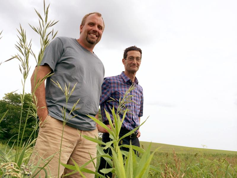 Farmer Seth Watkins (left) and agronomist Matt Liebman stand amid native prairie grasses near Des Moines, Iowa. The conservation strip is used to stop soil erosion.