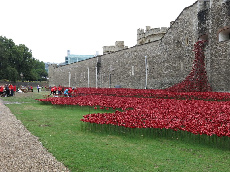 This installation at the Tower of London will ultimately feature 888,246 ceramic poppies, honoring the soldiers from Britain and the British colonies who died in World War I.
