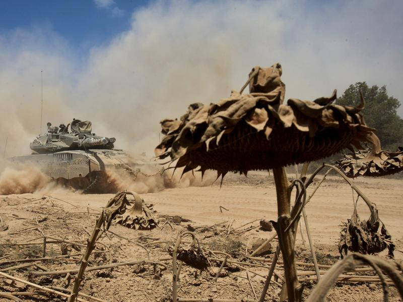 An Israeli Merkava tank drives past a field of sunflowers along the border between Israel and the Gaza Strip as it moves out of the Gaza Strip on Aug. 3.