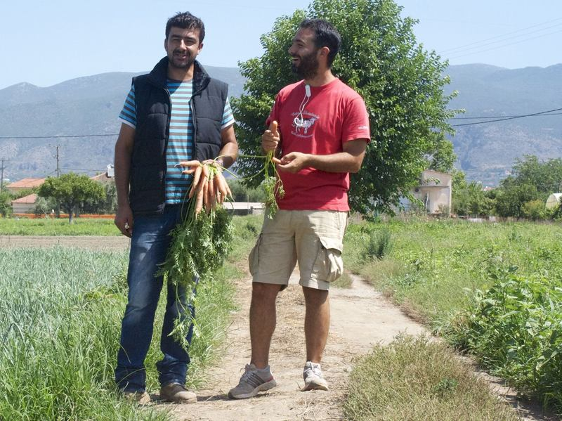 "Ilias Smirlis (left) runs a small family farm in Kalamata, Greece. Before he met entrepreneur Sotiris Lymperopoulos, who runs the food service Radiki, he struggled to sell his produce outside Athens. ""The demand for excellent products will always exist,"" Smirlis says. ""The challenge is to find a market."""