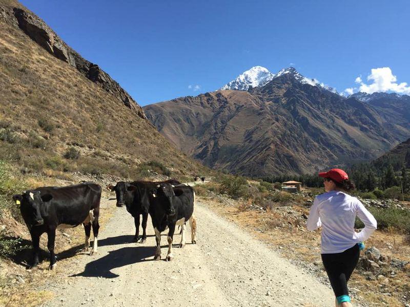 Karyn running through the Andes Mountains on her way to Machu Picchu. (Karyn Miller-Medzon/Here & Now)