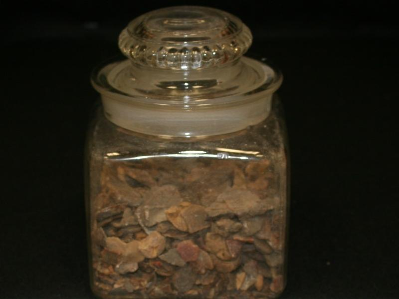 Chewing gum believed to have been masticated by the notorious gangster John Dillinger, now on display at the History of Pharmacy Museum in Tucson, Ariz.