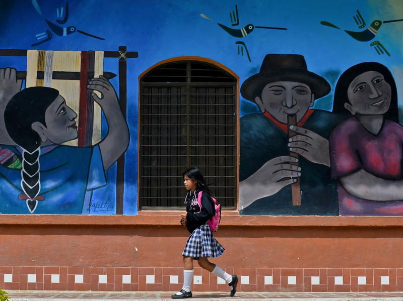 A mural in the town of Toribio, Colombia, displays an idyllic rural scene. But the reality is that many rural parts of the country are desperately poor and lawless.