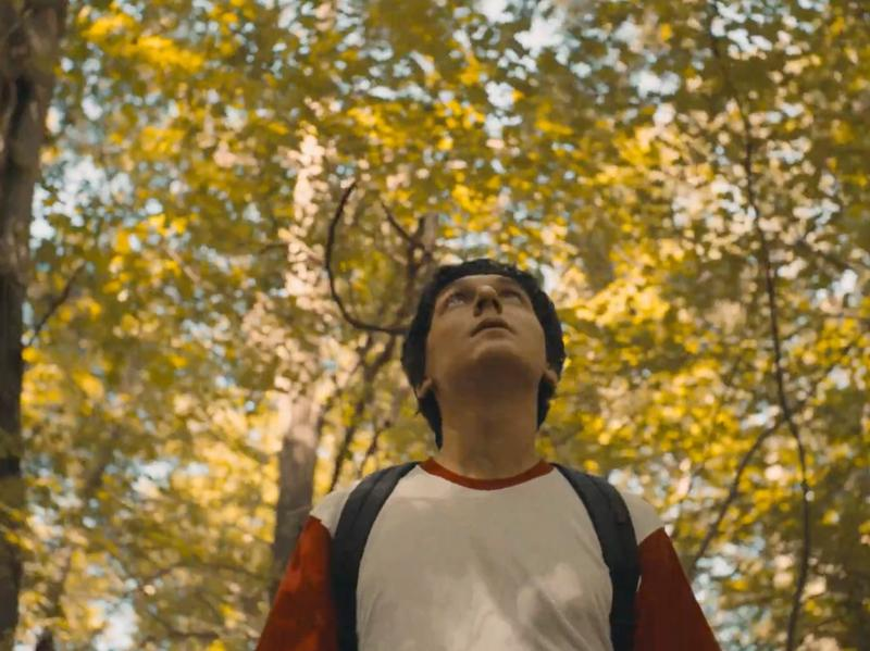 "A young man walks through a sunny wood in a scene from LVL UP's new video for ""The Closing Door."""
