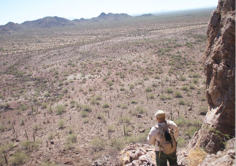 A Border Patrol mountain scout interdiction agent looks out from a hilltop in the West Desert in Arizona. (Michel Marizco/Fronteras)
