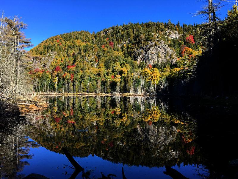 Fall color reflected in Giant's Washbowl in New York's Adirondack Mountains. (David Sommerstein/NCPR)