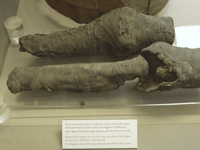 The mummified remains, shown in a 2014 exhibition in Museo Egizio Turin.