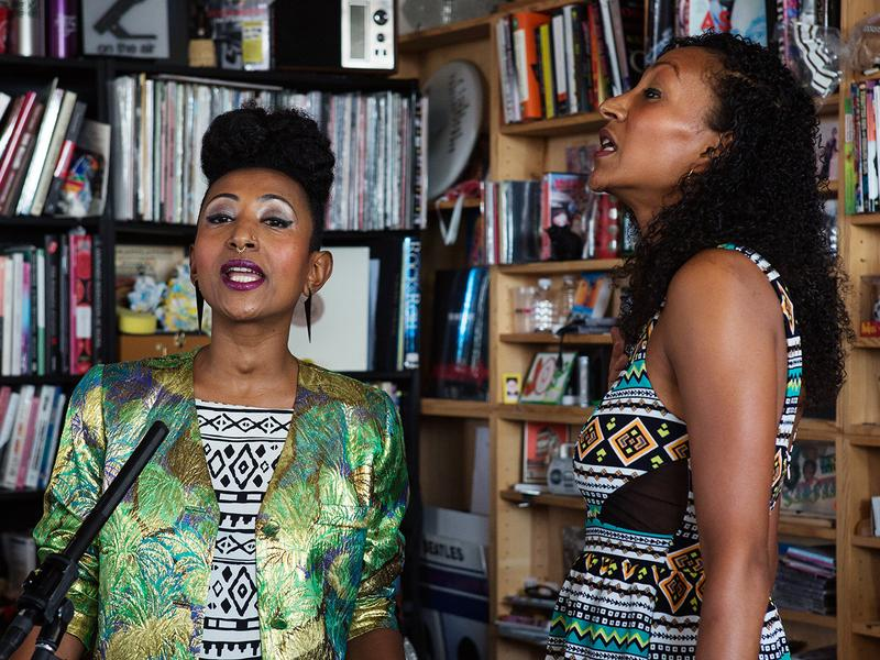 Alsarah & The Nubatones perform a Tiny Desk Concert on Nov. 3, 2016. (Raquel Zaldivar/NPR)