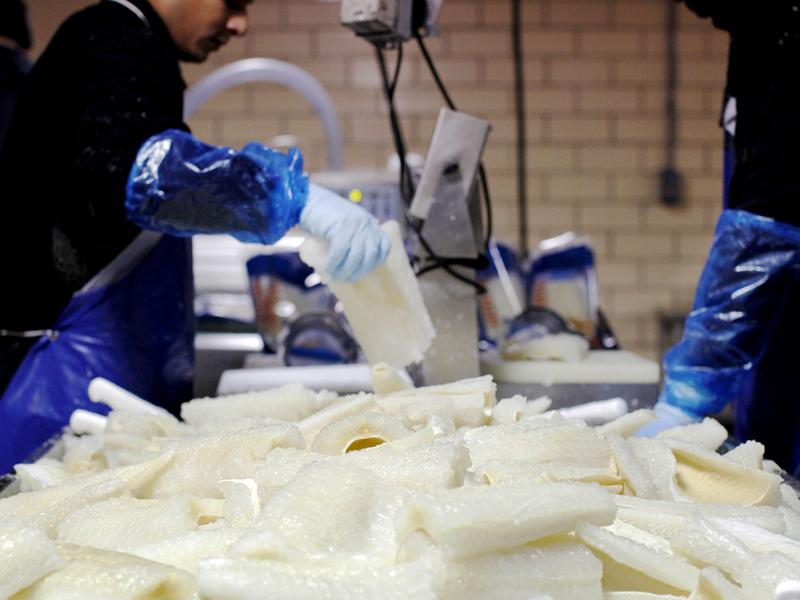 At Olsen Fish Co. in Minneapolis, workers make lutefisk out of dried ling cod brought in from Norway.