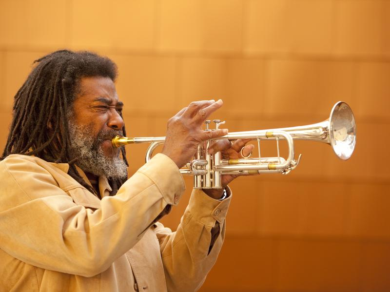 Jazz critic Francis Davis says two 2016 projects from Wadada Leo Smith are are must-listens: his solo record, <em>America's National Parks, </em>and his collaboration with Vijay Iyer,<strong> </strong><em>A Cosmic Rhythm with Each Stroke.</em><strong> </strong>