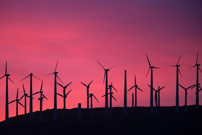 A wind farm near Palm Springs, Calif. (David McNew/AFP/Getty Images)