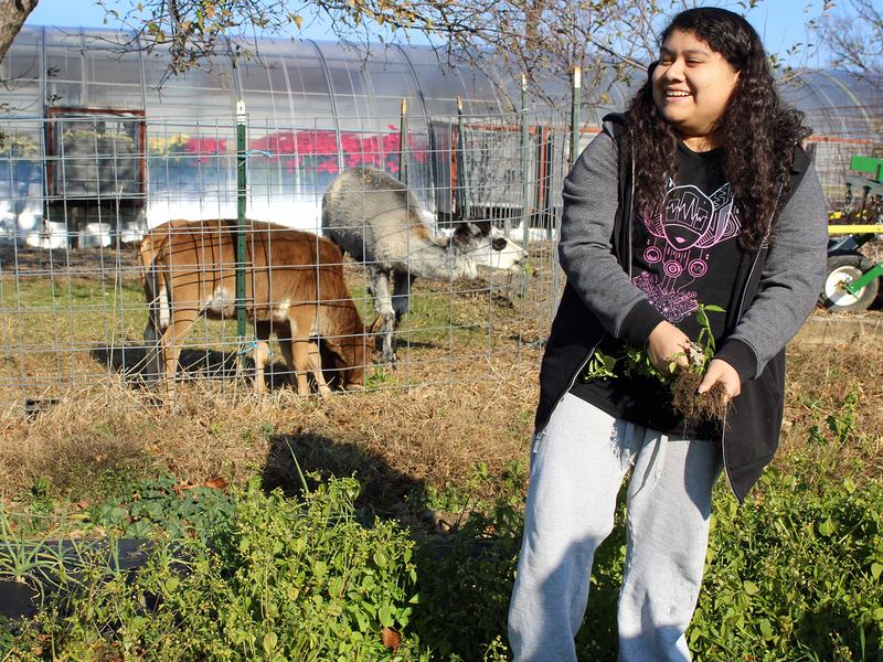 """Natalie Arroyo is a senior """"Aggie,"""" one of 600 New York City public school students enrolled in a specialized, four-year agriculture program at John Bowne High School in Queens. She plans to become an agriculture educator after college."""