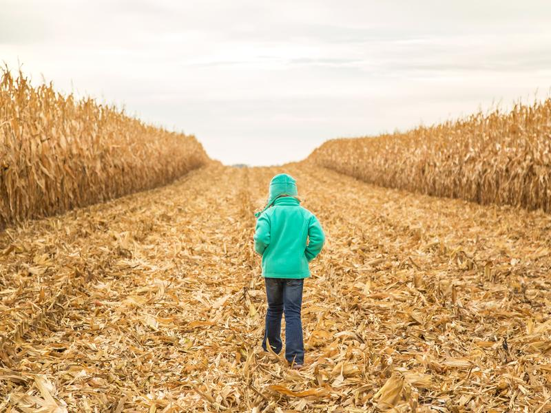 Synthetic fibers from fleece jackets could be ending up in rivers, fields and our diet.