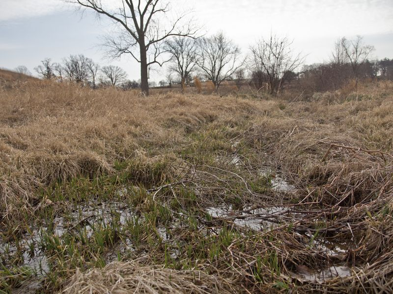Massey Run, an intermittent stream that runs into Crum Creek in Pennsylvania's Chester County, is impacted by the Waters of the United States rule.