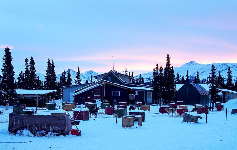 The view of the dog lot at Husky Homestead outside Denali, Alaska, on Jan. 26, 2017. (Zachariah Hughes/Alaska Public Media)