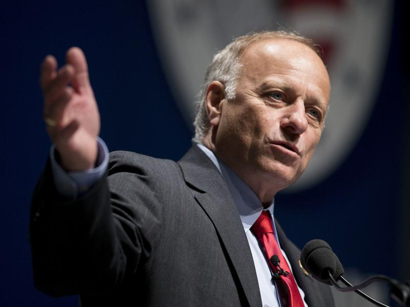 "Iowa Rep. Steve King stands by his remark that ""We can't restore our civilization with somebody else's babies."""