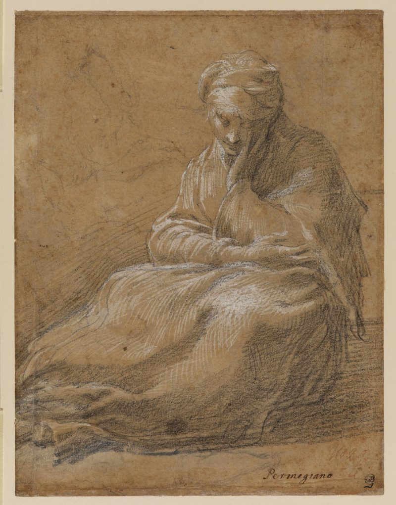 Parmigianino (1503–1540). Woman Seated on the Ground, c. 1523–24. Black chalk and white gouache on light brown tinted paper 9 x 6.9 inches