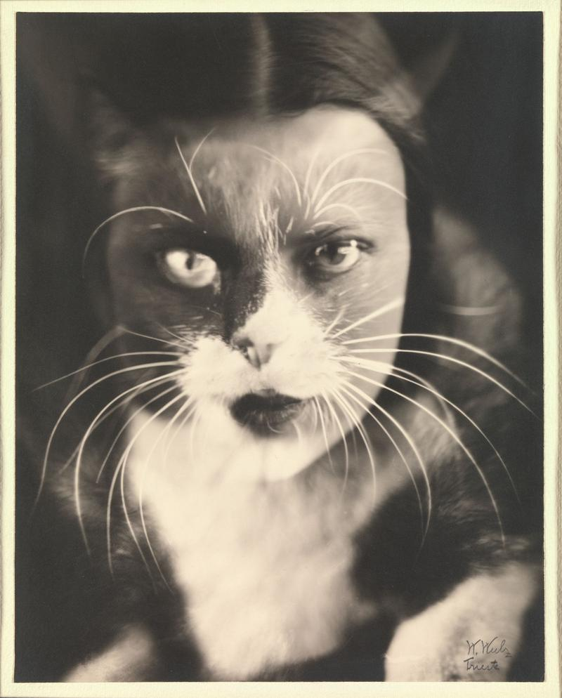 Wanda Wulz. Io + gatto. [Multiple Exposure of Woman and Cat's Face] 1932, Gelatin silver print. Ford Motor Company Collection, Gift of Ford Motor Company and John C. Waddell, 1987