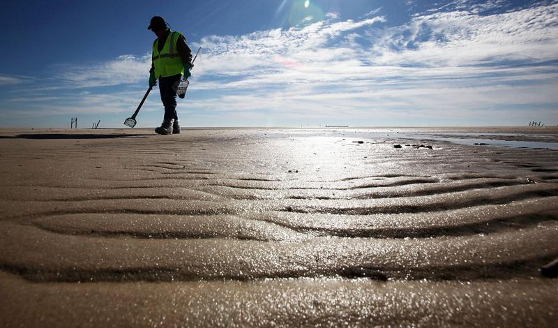 worker cleans tarballs from the BP oil spill on Waveland beach December 6, 2010 in Waveland, Mississippi. Nearly eight months after the spill, tarballs are still washing up on the beach.