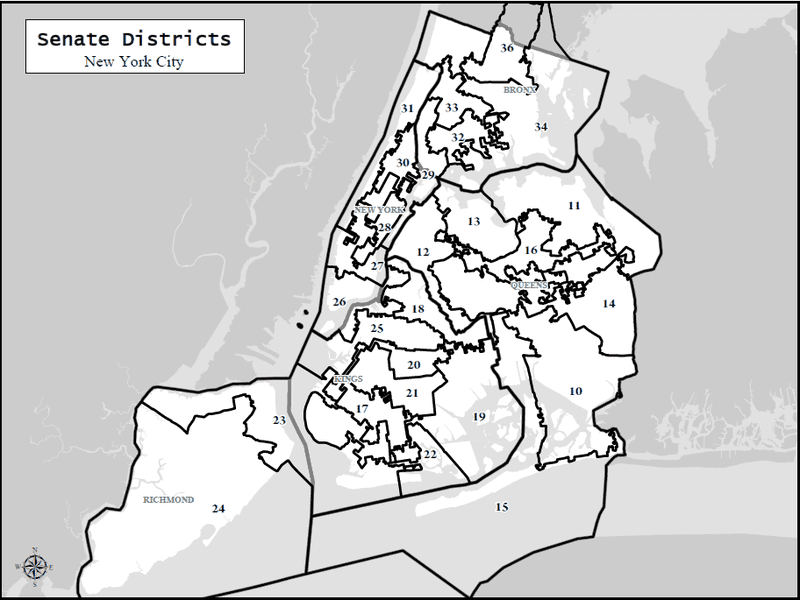 New York City's new state senate map.