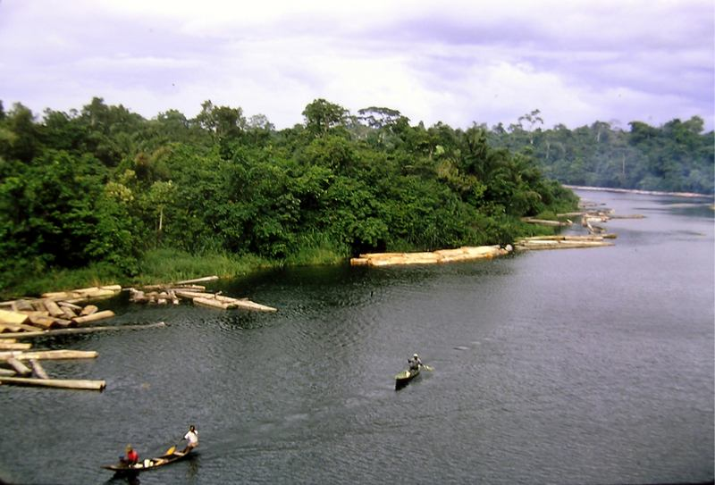 The Niger River delta.