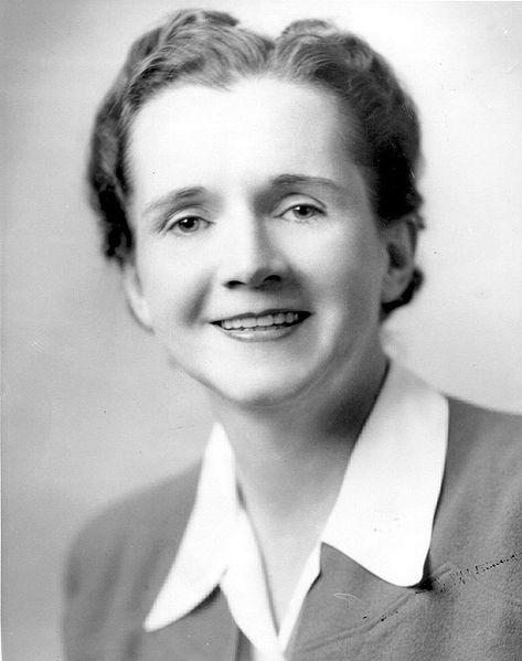 Rachel Carson's Fish & Wildlife Services Employee Photo, 1940