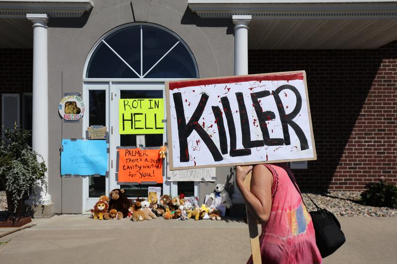 Protesters call attention to the alleged poaching of Cecil the lion, in the parking lot of Dr. Walter Palmer's River Bluff Dental Clinic on July 29, 2015 in Bloomington, Minnesota.