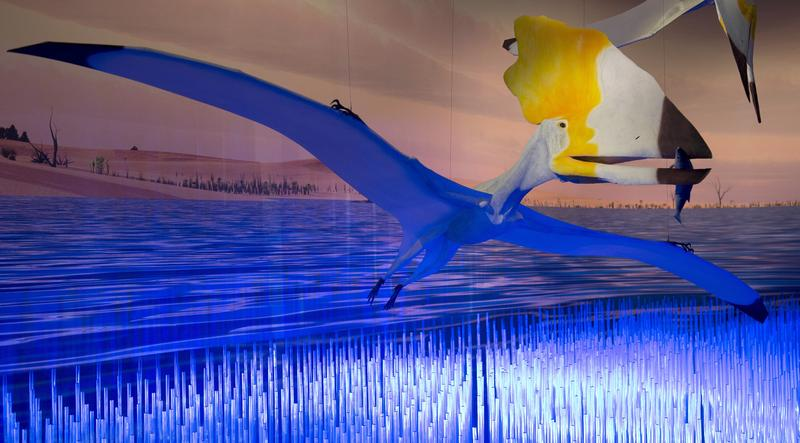 Part of the exhibit called 'Pterosaurs: Flight in the Age of Dinosaurs' are shown at a preview April 1, 2014 at the American Museum of Natural History in New York.