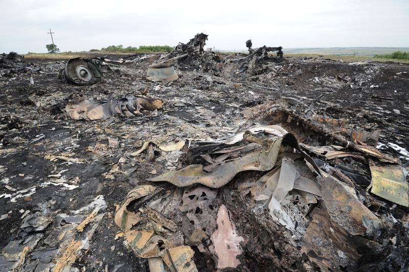 A picture taken on July 18, 2014 shows the wreckages of the Malaysia Airlines jet carrying 295 people from Amsterdam to Kuala Lumpur a day after it crashed in rebel-held east Ukraine.