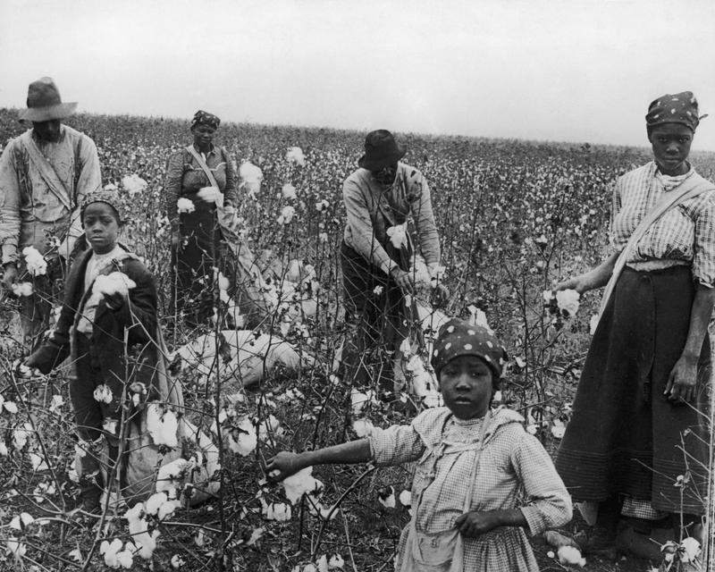 Cotton-pickers at work, Texas, circa 1925.