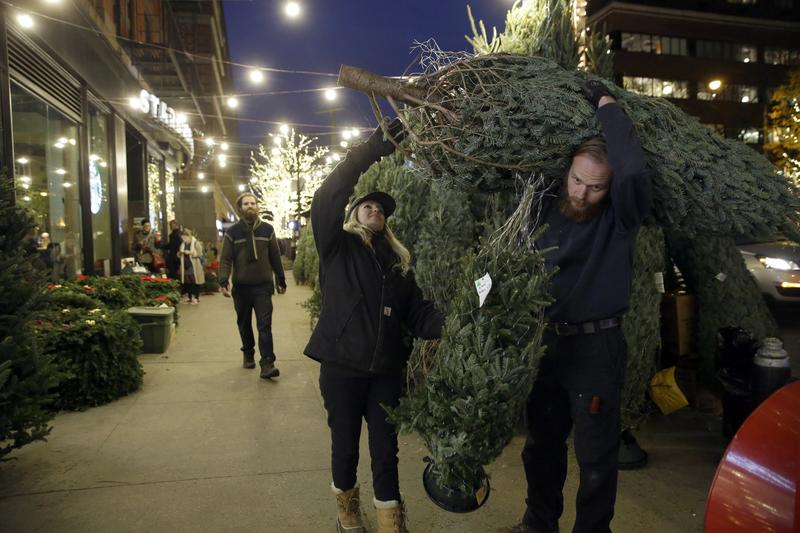 New Yorkers carry home Christmas trees.