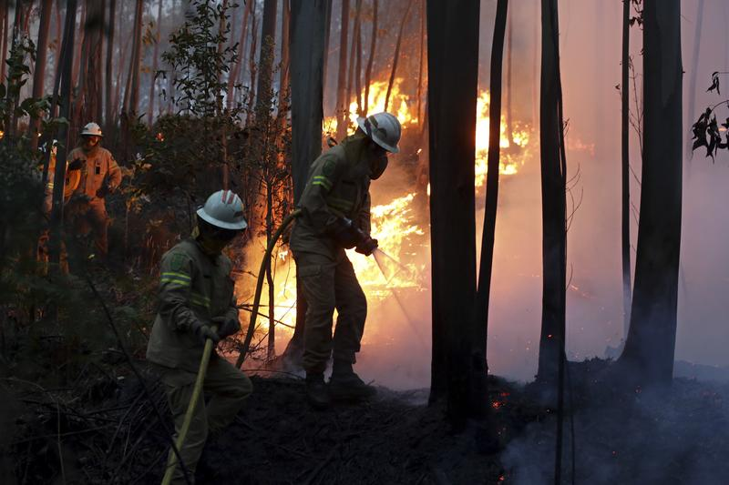Firefighters attempted to put out a forest fire in central Portugal on Sunday