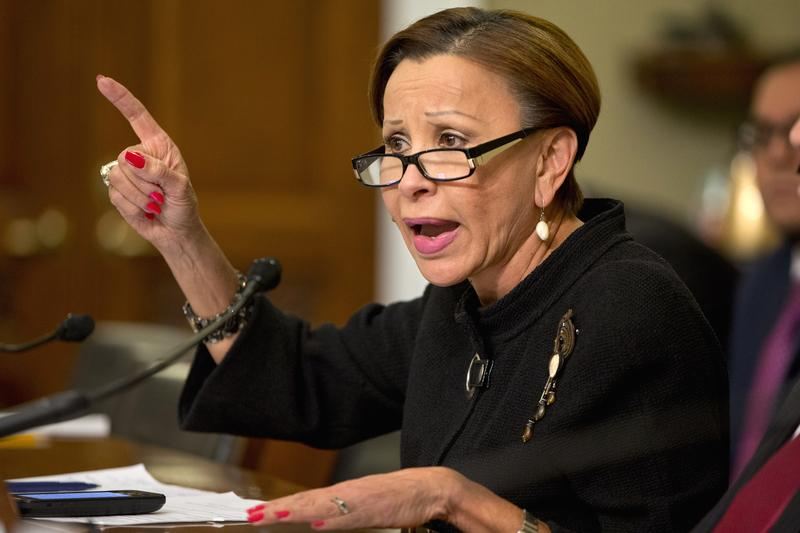 Rep. Nydia Velazquez, D-N.Y. speaks on Capitol Hill in Washington, Tuesday, Jan. 12, 2016.