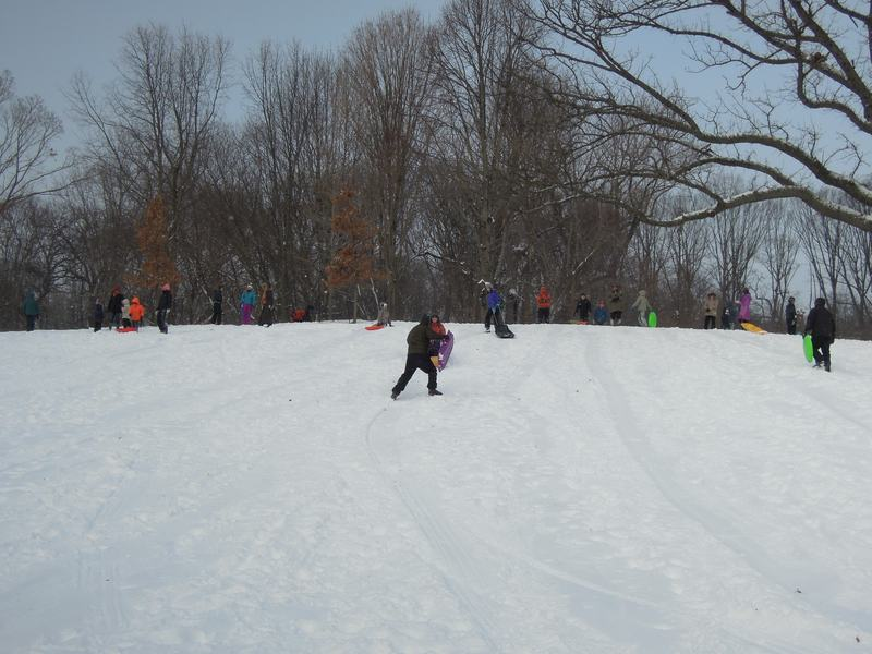 It wasn't too cold for dozens of children determined to find the best hill for sledding. The hill near the Picnic House was the best one in Prospect Park, they said.