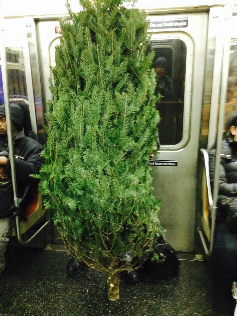 Christmas comes to the D train
