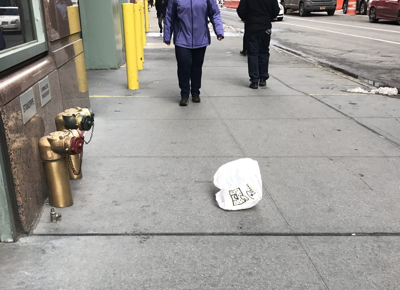 Plastic bags ban is now Andrew Cuomo's job