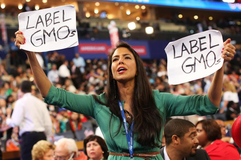 Vani Hari, the Food Babe, at the Democratic National Convention in 2012.