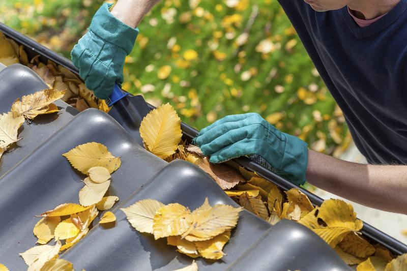 Man cleaning autumn leaves from the gutter