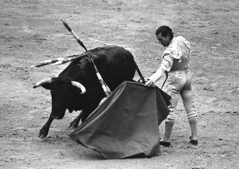 The Spanish bullfighter Antonio Bienvenida in a bullfight in the bullring of Las Palmas, 5th June 1971, Las Palmas, Canary Islands, Spain.