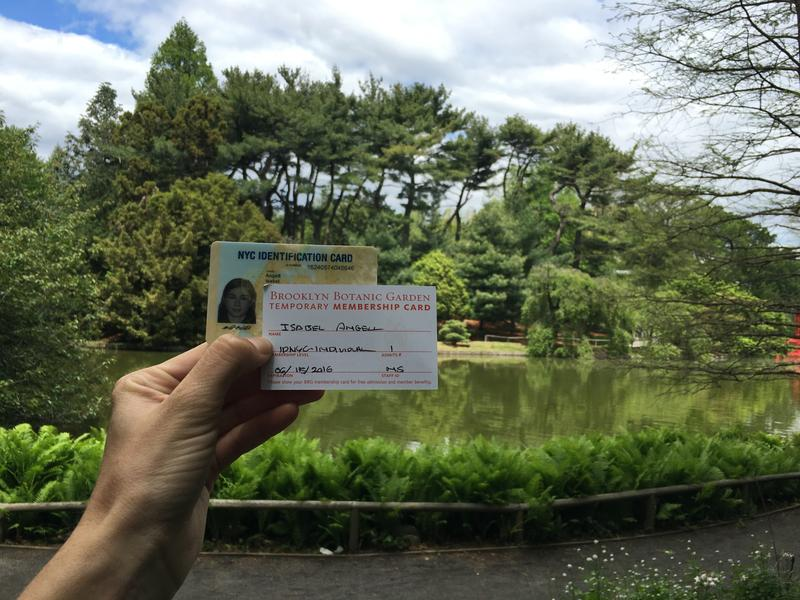 The city said it will no longer keep copies of the personal documents New Yorkers submit when applying for the immigrant-friendly municipal ID card.
