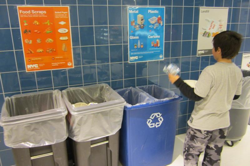 A child recycling at an elementary school cafeteria in Manhattan