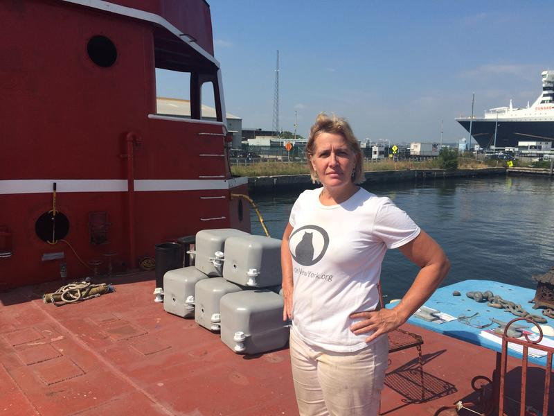 Carolina Salguero, founder and president of Port Side New York, on board the Mary A. Whalen in Red Hook, Brooklyn.